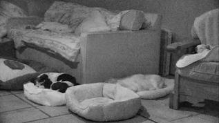 Babs in the bed on the left?