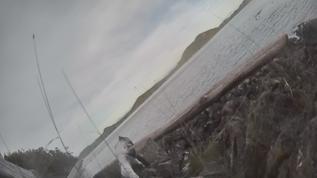 Cracroft underwater cam
