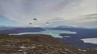 raining on Dumpling 10/29/17 2 p.m. only other cam is Naknek - no bears