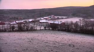 Gorgeous colour this morning.
