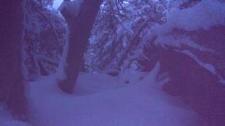 Heap Big snow cover 11-18-17