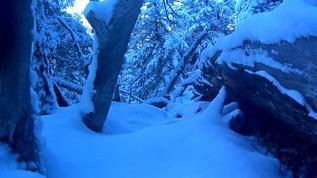 More light on the big snow 11-18-17