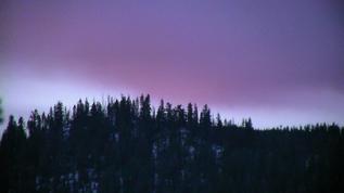 Enjoying dawn