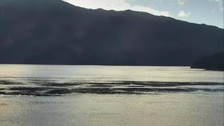 Parson Island  so peaceful