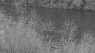 07 14pst  ...all is sleeping; the river is running though....