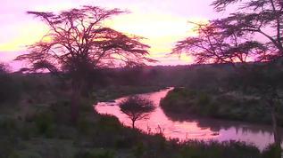 Good Morning, Mpala! What a glorious dawn!
