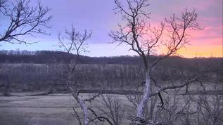DNN sunrise