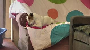 I love Betty's new couch quilt.