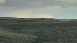 Rainbow on the horizon!