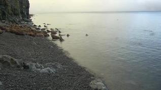 coming ashore 9:50pm